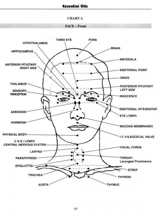 Pressure points, Massage and Facial massage on Pinterest