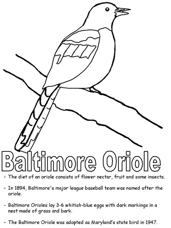 Coloring, Coloring sheets and Maryland on Pinterest