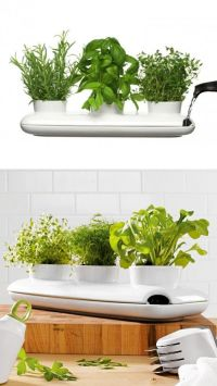Gardens, Stylish bedroom and LUSH on Pinterest