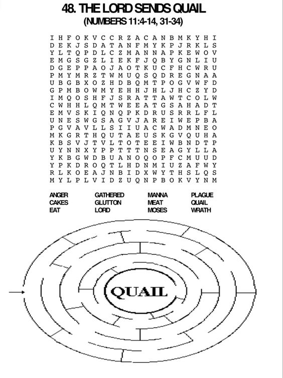Quails, Words and Word search on Pinterest