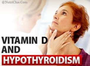 hypothyroidism treatment in dogs