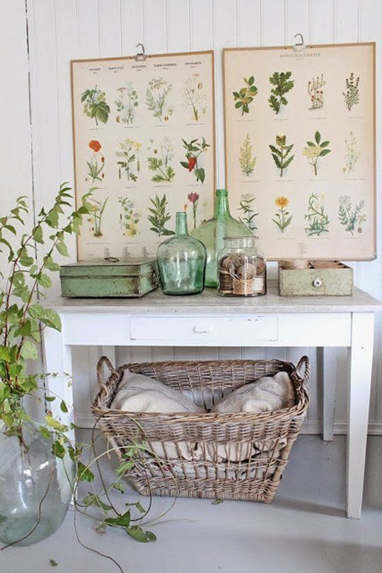 Free Botanical & Science Designs for Decor Projects | Apartment Therapy: