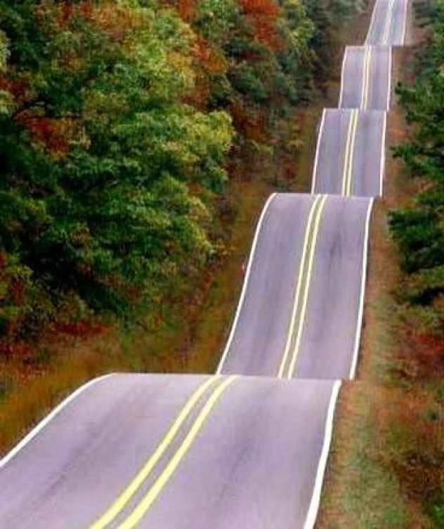 Highway 17, South Carolina....I want to drive on this road!!!: