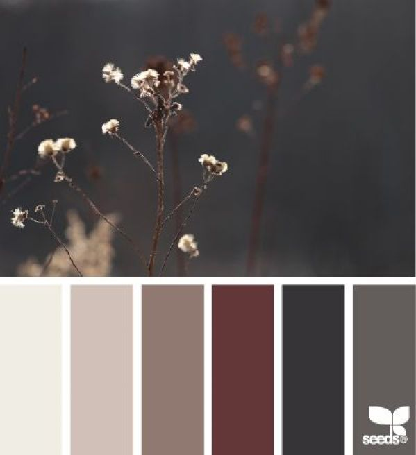 Nature Tones - http://design-seeds.com/home/entry/nature-tones23: