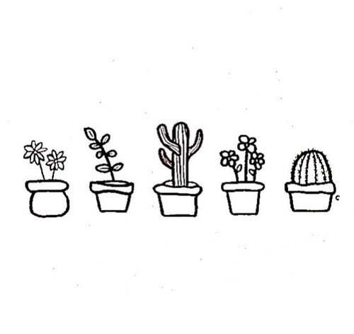 Succulents, Drawings and Simple on Pinterest