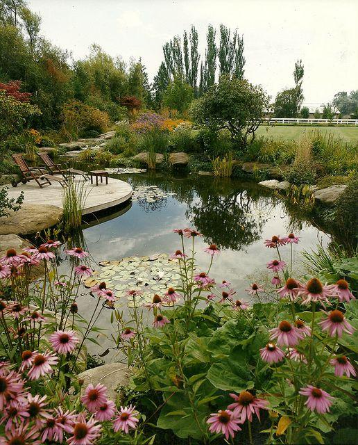 ALKA POOL - Pond by Alka Pools, via Flickr: