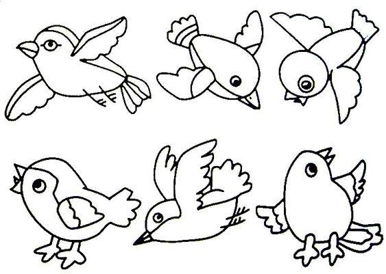 Birds, Preschool activities and Coloring pages on Pinterest