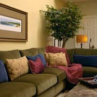 Traditional Family Room Olive Green Couches Design ...