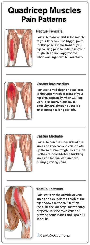 Thigh muscle pain symptoms can be mild to extreme based on the level of your injury. A sharp pain or pulling may be felt in the area of the pull ...