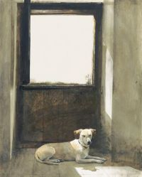 Andrew wyeth, Dogs and Watches on Pinterest