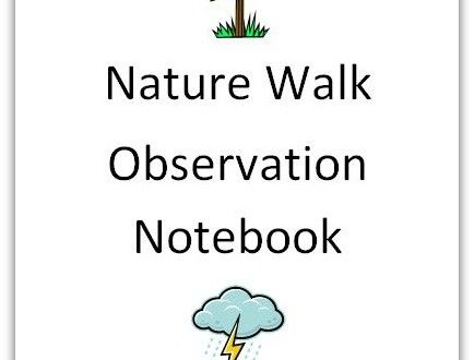 Nature, Notebooks and Walks on Pinterest