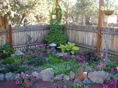 Toronto Shade Garden Garden Design Calimesa Ca Beginner Garden