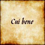 Afbeeldingsresultaat voor cui bono