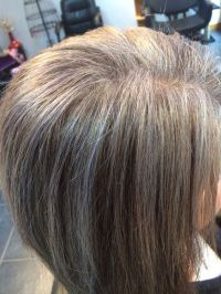 salt and pepper hair with highlights - Google Search ...