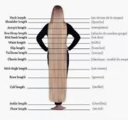 hair lengths chart