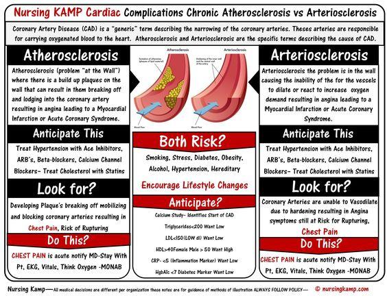 coronary heart disease essay   ivoiregion help cant do my essay coronary heart disease thesis