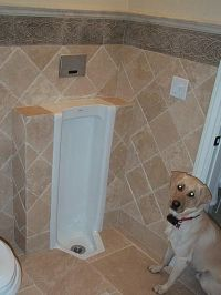 The Urinals of Dave's House home search map gallery top 10 ...