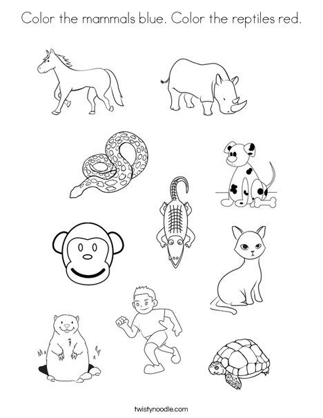Color the mammals blue Color the reptiles red Coloring