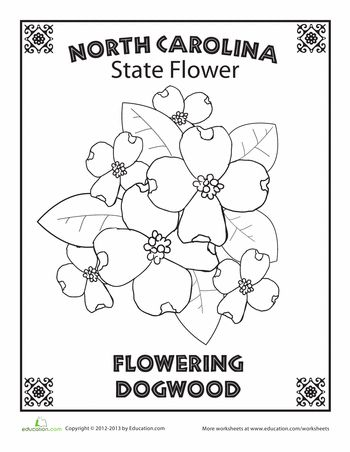 Flower, US states and Worksheets on Pinterest