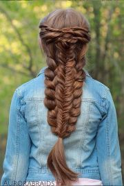 perfect braided hairstyle special