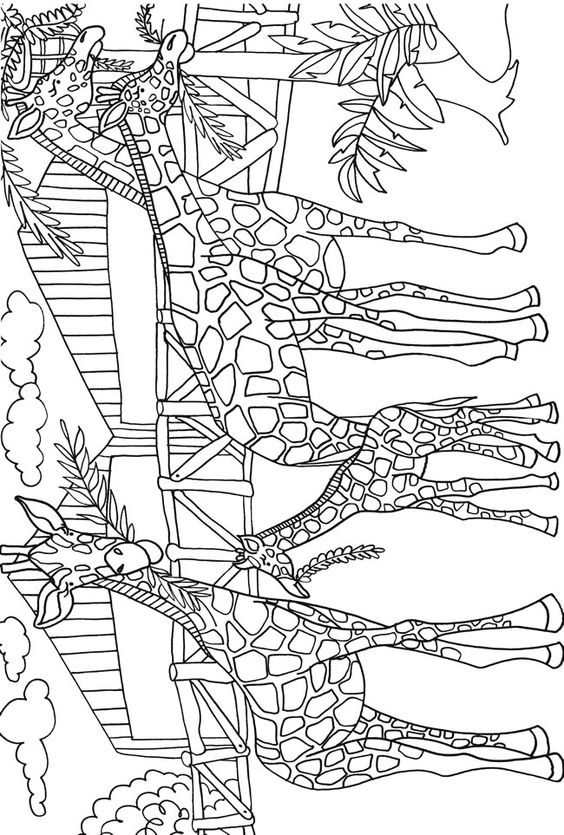 Coloring, Coloring books and Dover publications on Pinterest