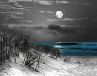 Black And White Beach Photography With Color | www.imgkid ...
