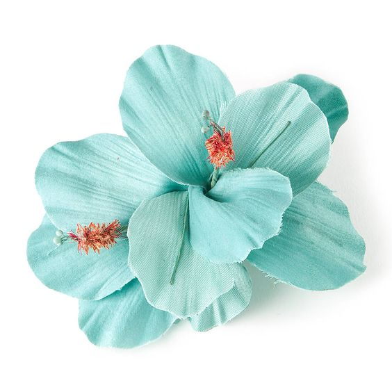 turquoise double hibiscus flower