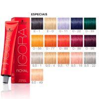 Color chart: Schwarzkopf Igora specials, salon-quality ...
