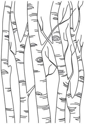 Birch Tree Forest design (UTH12882) from UrbanThreads.com