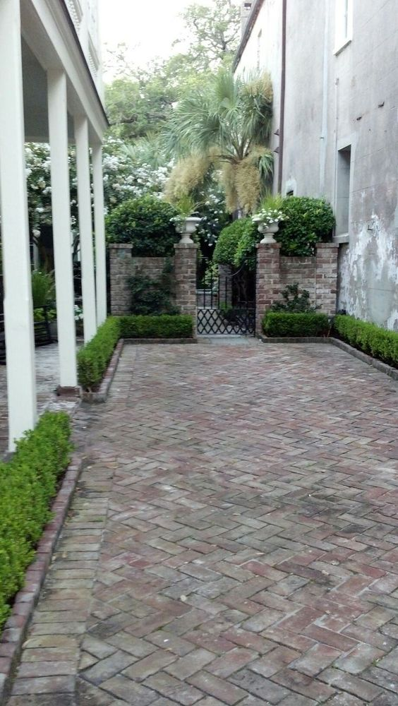 patio herringbone brick  GARDEN  San Antonio  Pinterest