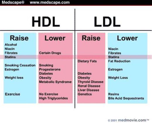 Raise HDL - Lower LDL: