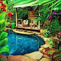Backyard pools, Backyards and Pools on Pinterest