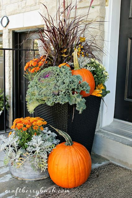 Love this combo of kale, pumpkins, grasses & mums: