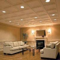 drop ceilings in basements