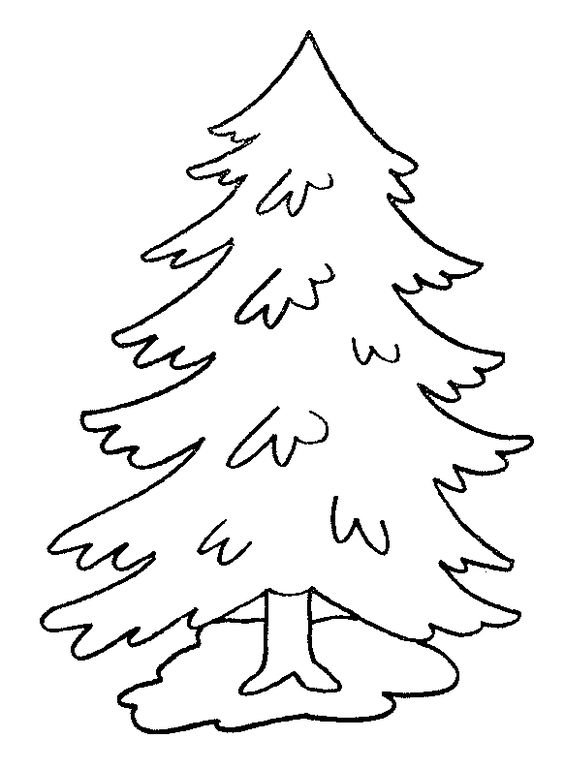 Trees, Coloring and Coloring pages on Pinterest