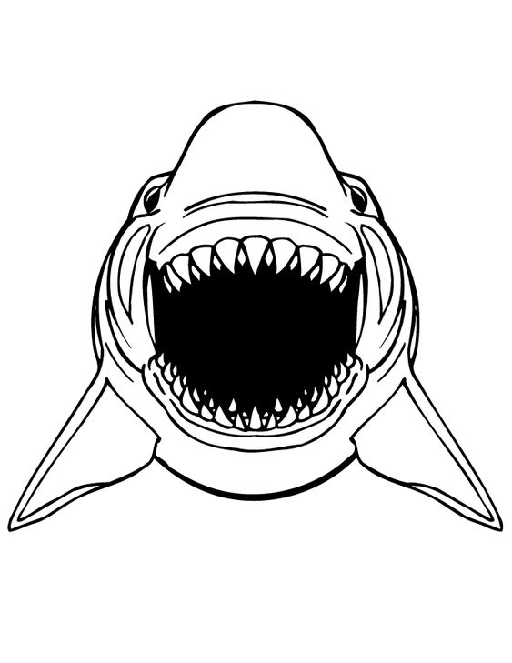 Great white shark, Scary and Free printable coloring pages