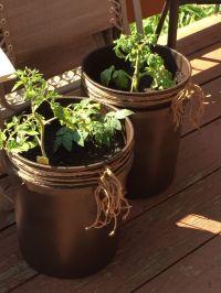 Diy 5 gallon bucket patio container tomato planter Spray a ...