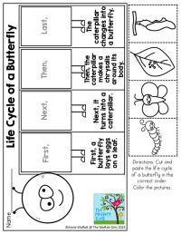 Number Names Worksheets  Butterfly Life Cycle Cut And ...