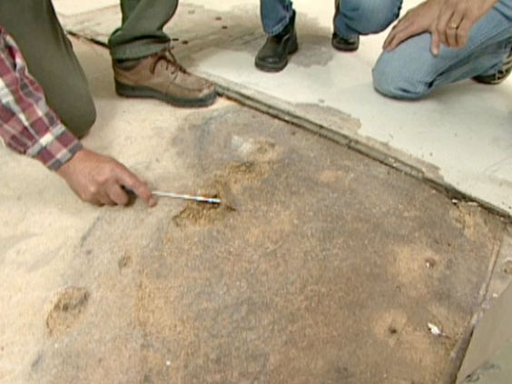 How to Repair a WaterDamaged Subfloor  To be Home and