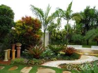 Tropical Front Yard Landscaping Ideas | tropical landscape ...