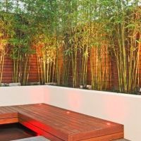 Bamboo Planter Design. Side yard privacy screen | For the ...
