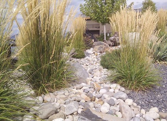 landscaping xeriscape