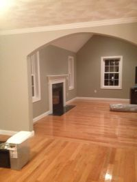 Benjamin Moore Silver Fox and Revere Pewter | For the Home ...