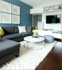 Best ideas about Teal Accent Wall Living Room, Blue Accent ...