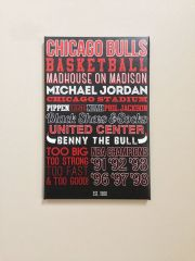 chicago bulls and canvas