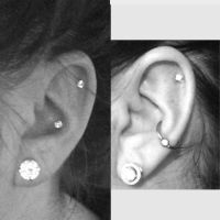 Conch, Diamond studs and Piercing on Pinterest
