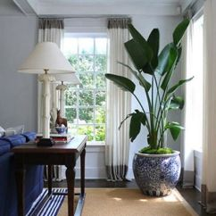 Banana Leaf Rocking Chair Blue High Back Chairs David Lawrence, Hamptons House, Via Habitually Chic- Love The Big House Plant | Design ...