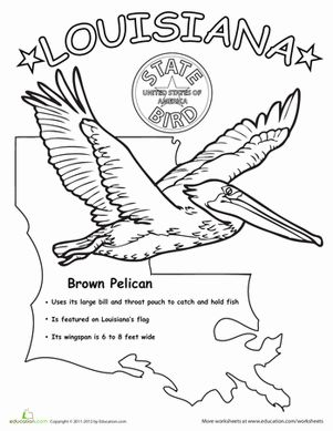 Louisiana, Science worksheets and Worksheets on Pinterest