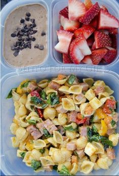 amazing School Lunches for your kids