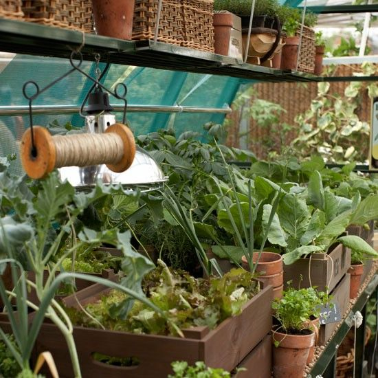 January Gardening Ideas 10 Things To Do Gardens The Plant And